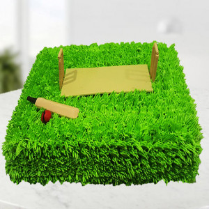 Cricket Ground Cake
