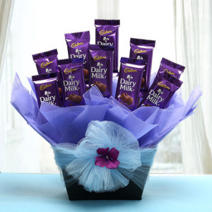 Dairy Milk Delight Combo