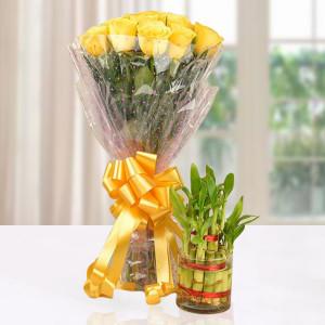 Good Luck Yellow Rose Combo