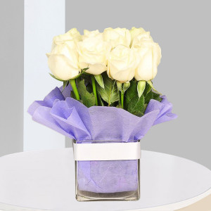Vase of White Rose