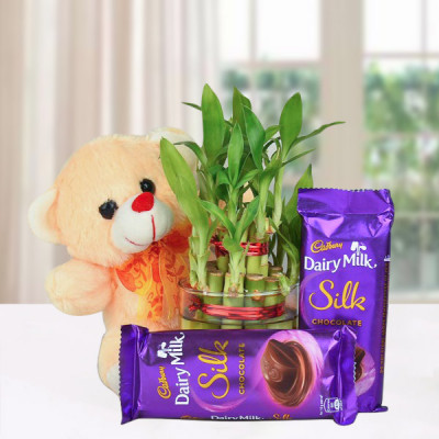 Lucky Bamboo Hamper