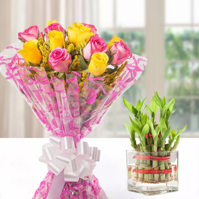 Lucky Bamboo with Pink and Yellow Roses Combo