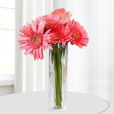 Pink Gerberas Vase