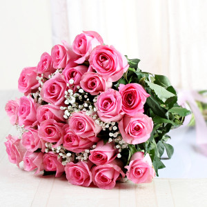 Alluring Pink Roses