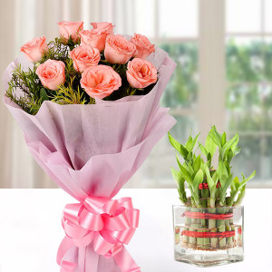 Lucky Bamboo & Pink Roses Combo