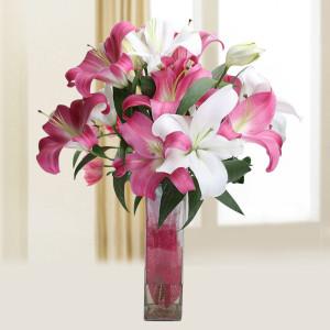 Pink N White Lily Vase