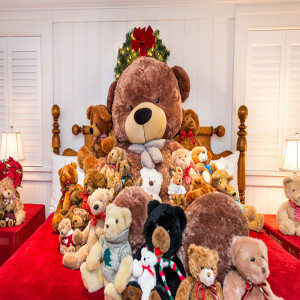 Room Full Of Teddy