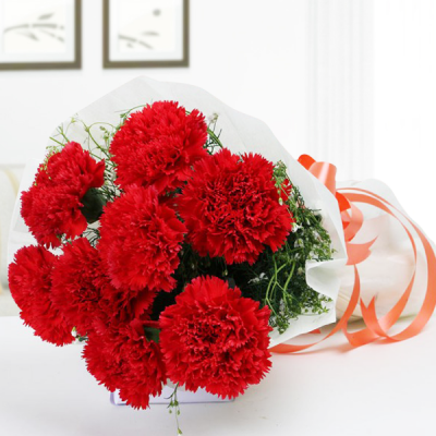 Enchanting Red Carnation Bunch